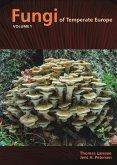 Fungi of Temperate Europe