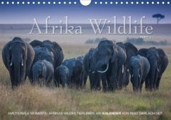 Emotionale Momente: Afrika Wildlife. Part 3. / CH-Version (Wandkalender 2020 DIN A4 quer)