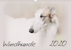 Windhunde 2020 (Wandkalender 2020 DIN A3 quer)