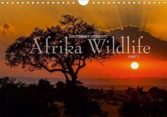 Emotionale Momente: Afrika Wildlife Part 2 / CH-Version (Wandkalender 2020 DIN A4 quer)