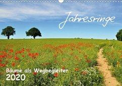 Jahresringe - Bäume als Wegbegleiter (Wandkalender 2020 DIN A3 quer)