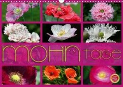 Mohn Tage (Wandkalender 2020 DIN A3 quer)