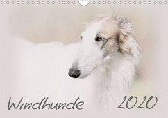 Windhunde 2020 (Wandkalender 2020 DIN A4 quer) - Redecker, Andrea