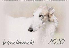 Windhunde 2020 (Wandkalender 2020 DIN A2 quer) - Redecker, Andrea