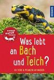 Was lebt an Bach und Teich? Kindernaturführer (eBook, PDF)