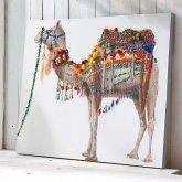 Bild Camel