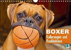 Boxer: Kulleraugen und Knubbelnase (Wandkalender 2020 DIN A4 quer)