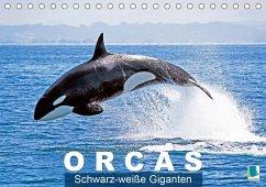 Orcas: Schwarz-weiße Giganten (Tischkalender 2020 DIN A5 quer)