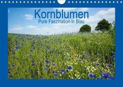 Kornblumen - Pure Faszination in Blau (Wandkalender 2020 DIN A4 quer)