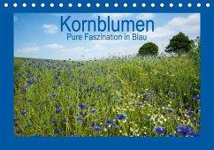 Kornblumen - Pure Faszination in Blau (Tischkalender 2020 DIN A5 quer)
