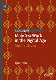 Male Sex Work in the Digital Age (eBook, PDF)