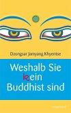 Weshalb Sie (k)ein Buddhist sind (eBook, ePUB)