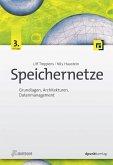 Speichernetze (eBook, PDF)