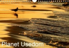 Planet Usedom (Wandkalender 2020 DIN A4 quer)