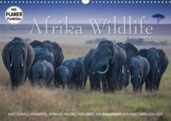 Emotionale Momente: Afrika Wildlife. Part 3. (Wandkalender 2020 DIN A3 quer)