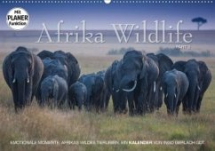Emotionale Momente: Afrika Wildlife. Part 3. (Wandkalender 2020 DIN A2 quer) - Gerlach GDT, Ingo