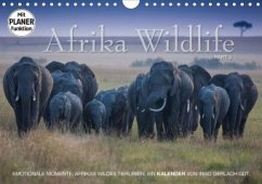 Emotionale Momente: Afrika Wildlife. Part 3. (Wandkalender 2020 DIN A4 quer)