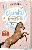 Erste Liebe, erstes Turnier / Charlottes Traumpferd Bd.4