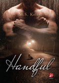 Handful (eBook, ePUB)