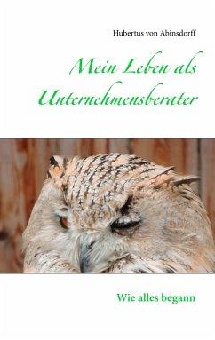Mein Leben als Unternehmensberater - Abinsdorff, Hubertus von