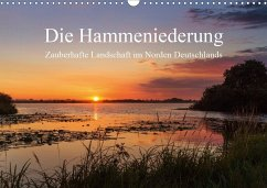 Die Hammeniederung - Zauberhafte Landschaft in Norden Deutschlands (Wandkalender 2020 DIN A3 quer)