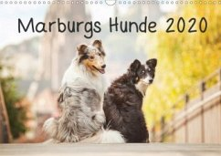 Marburgs Hunde 2020 (Wandkalender 2020 DIN A3 quer)