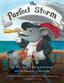 The Perfect Storm (eBook, ePUB)