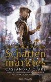 Die Geheimnisse des Schattenmarktes (eBook, ePUB)