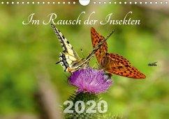 Im Rausch der Insekten (Wandkalender 2020 DIN A4 quer)