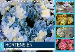 Hortensien Blühen und Vergehen (Tischkalender 2020 DIN A5 quer)