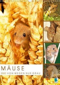 Zauberhafte Mäuse: Von wegen nur Grau (Wandkalender 2020 DIN A3 hoch)