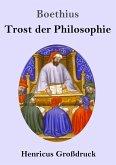 Trost der Philosophie (Großdruck)