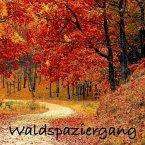 Waldspaziergang: Naturgeräusche und Meditationen (ohne Musik) zur Entspannung von Körper und Geist (MP3-Download)
