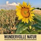 Wundervolle Natur: Naturgeräusche (ohne Musik) zum Entspannen, Regenerieren und Einschlafen (MP3-Download)