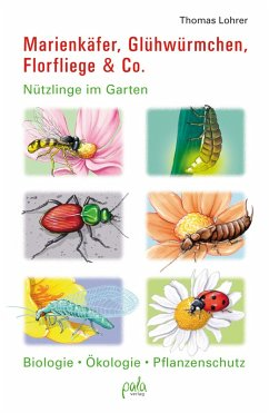 Marienkäfer, Glühwürmchen, Florfliege & Co. (eBook, PDF) - Lohrer, Thomas