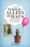 Schätzle allein zu Haus / Pipeline Praetorius Bd.5