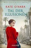 Tal der Illusionen / Caldwell-Saga Bd.2 (eBook, ePUB)
