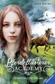 Zerbrechliche Träume / Pferdeflüsterer Academy Bd.5 (eBook, ePUB)
