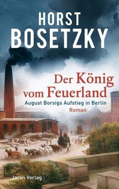 Der König vom Feuerland (eBook, ePUB) - Bosetzky, Horst