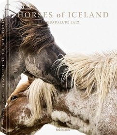 Horses of Iceland - Laiz, Guadalupe