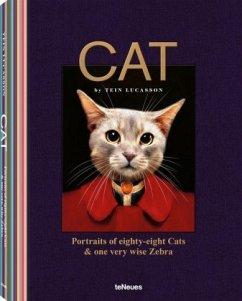 Cat - Lucasson, Tein