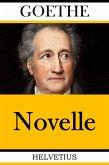 Novelle (eBook, ePUB)