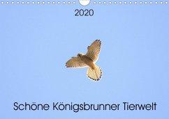 Schöne Königsbrunner Tierwelt (Wandkalender 2020 DIN A4 quer) - Andreas Lederle, Kevin