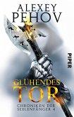Glühendes Tor / Chroniken der Seelenfänger Bd.4