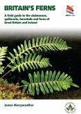 Britain's Ferns (eBook, PDF)
