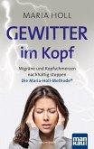 Gewitter im Kopf. Migräne und Kopfschmerz nachhaltig stoppen (eBook, PDF)