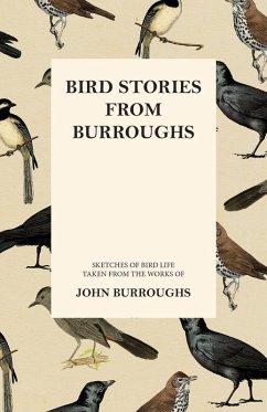 Bird Stories from Burroughs - Sketches of Bird Life Taken from the Works of John Burroughs (eBook, ePUB) - Burroughs, John