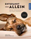 Entspannt allein (eBook, ePUB)
