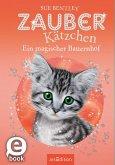 Ein magischer Bauernhof / Zauberkätzchen Bd.17 (eBook, ePUB)