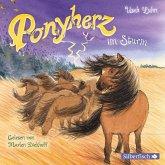 Ponyherz im Sturm / Ponyherz Bd.14 (1 Audio-CD)